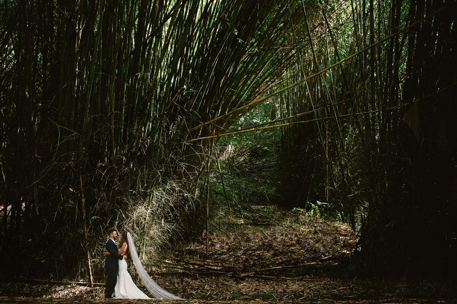 el-yunque-wedding-photographers