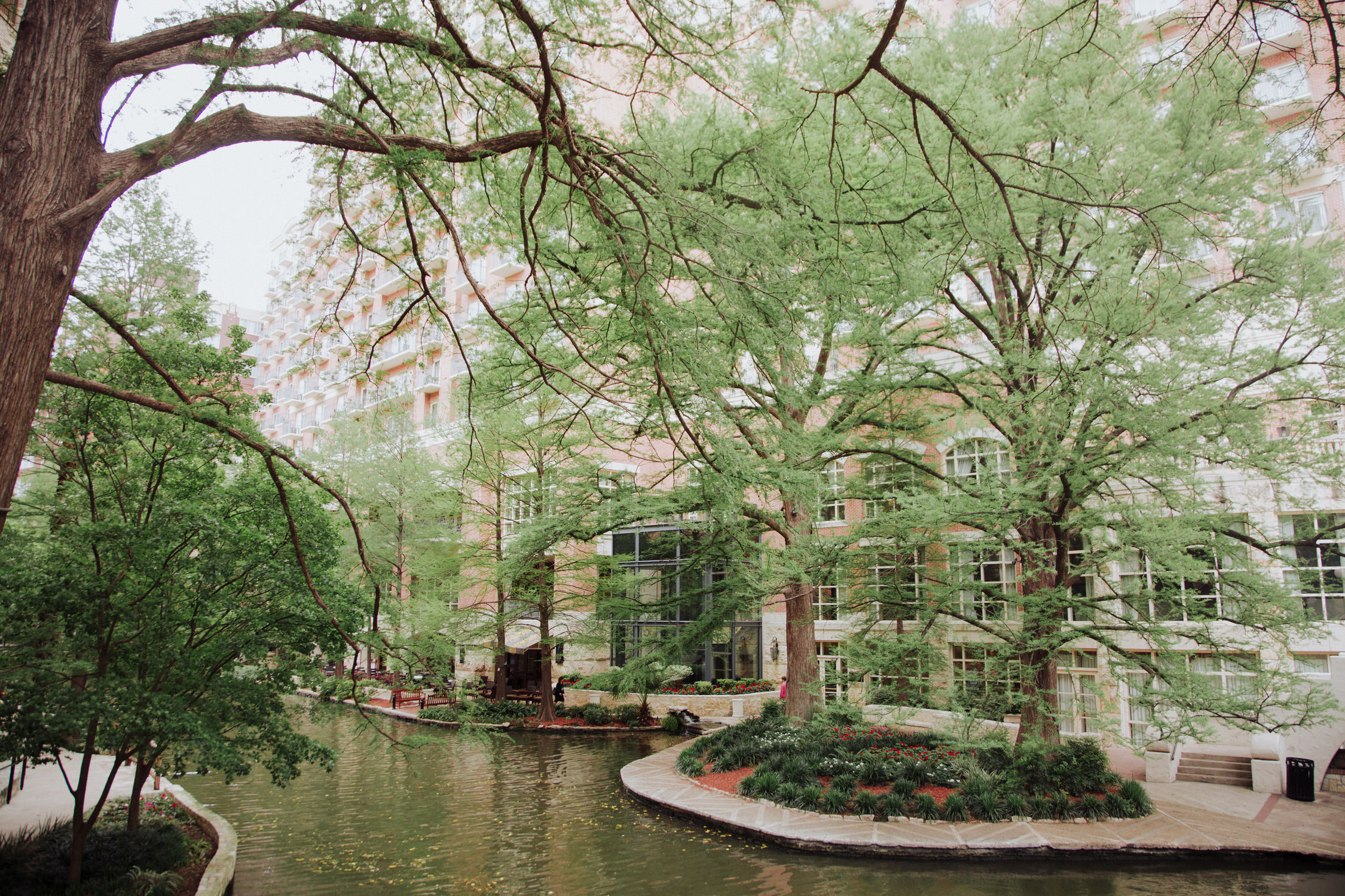 westin san antonio weddings